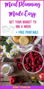 Learn how to meal plan and lower your grocery store budget. Tips and tricks to making meal planning easier and fun. #save #momlife #mealplan