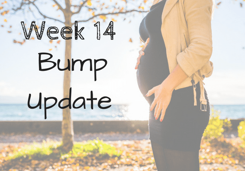 Follow me on my pregnancy bump journey! This is week 14 in my bump progression pics. Find out my cravings, symptoms, and how I am pushing through sciatica. I've even included a tip on how to get sciatica relief as well! Check out my weekly bump pictures and pregnancy photos along the way! #bumppictures #pregnancy #pregnantlife #momlife #parenting #maternity