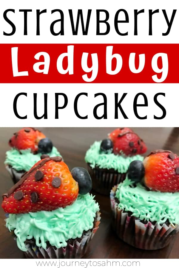 Garden Party Strawberry Ladybug Cupcakes