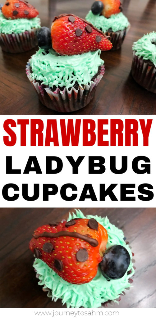 Delicious Strawberry Ladybug Cupcakes