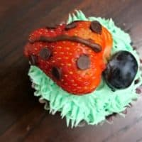 Strawberry Ladybug Cupcakes