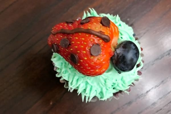 Up Close Ladybug Cupcake