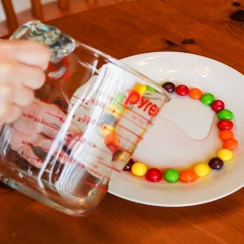 Science Project with Skittles
