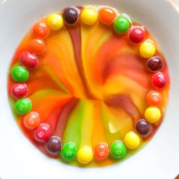 Skittles Experiment in Water