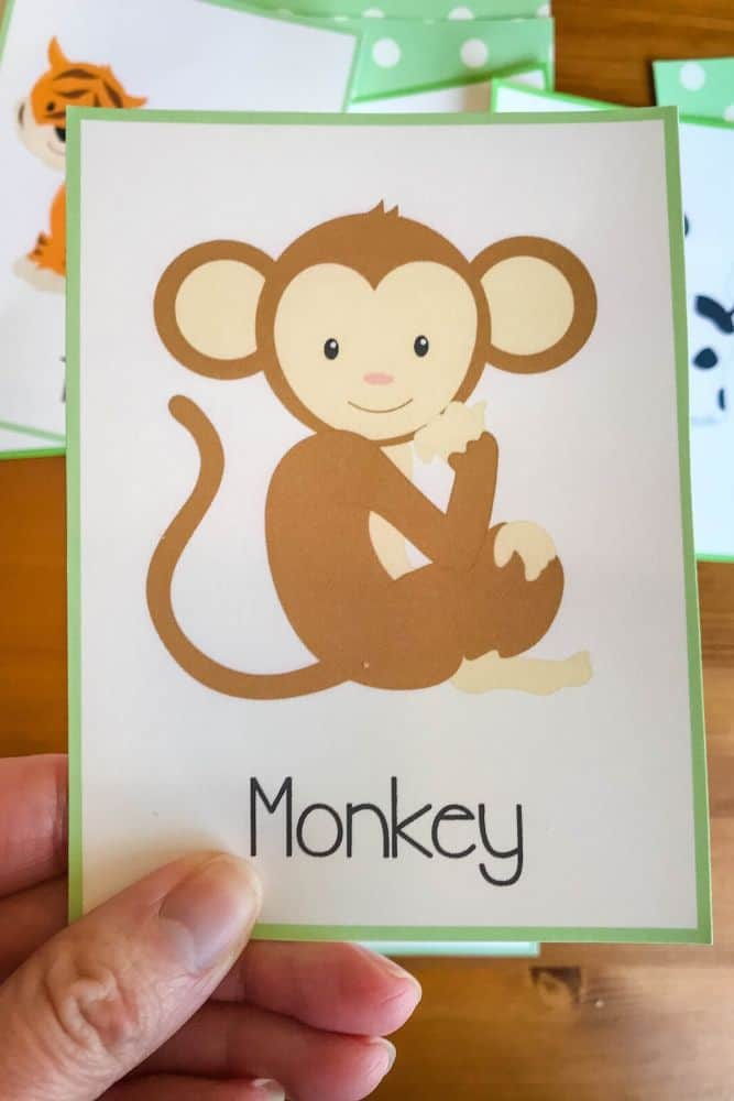 Monekey Charades Flash Card